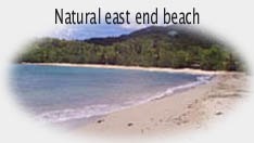 Any St. Croix beach is good for walking, snorkeling, swimming, shelling!