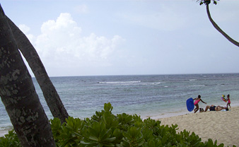 Pelican Cove condos on the beach are perfect for families!
